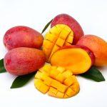 犬はマンゴーを食べても大丈夫 マンゴープリンやアイス ドライフルーツは?